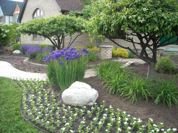 Landscape Design and Plantings