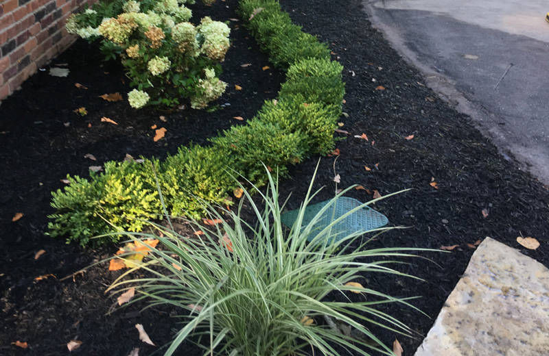 Recent Projects Of Landscape Contractor Higher Ground