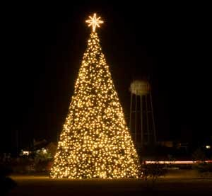 christmas tree lighting service - Christmas Light Tree